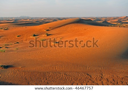 Desert near the town Dubai