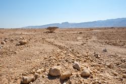Desert on the West Bank of the Jordan River