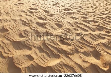 desert on United emirate desert safari