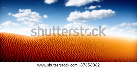 Desert Panorama