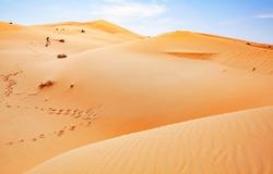 Desert Photographer at Liwa Abu Dhabi United Arab Emirate