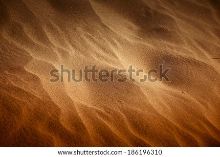 Stock Photo Desert sand closeup texture with golden sunlight