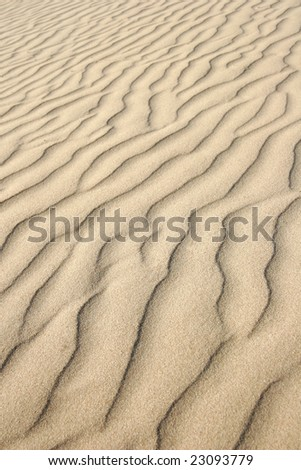 Desert sand dunes in travel adventure