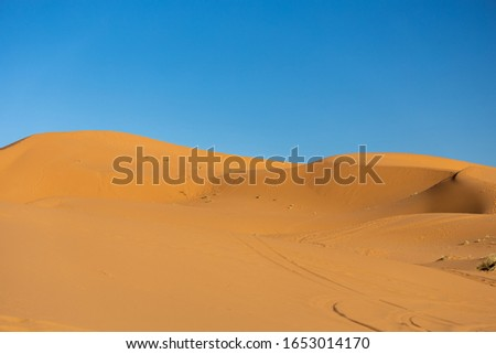 Desert sand dunes panorama with blue clean sky background