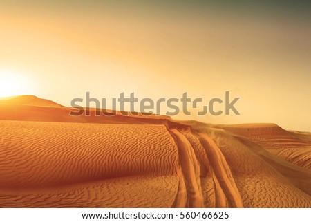 Desert sand dunes road at sunset #560466625