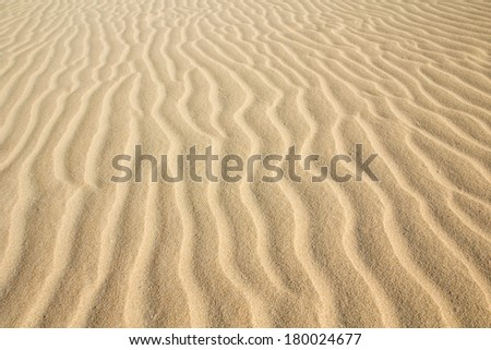 Desert sand pattern texture background from the sand in the Dunes of Corralejo in Fuerteventura, Canary Islands.