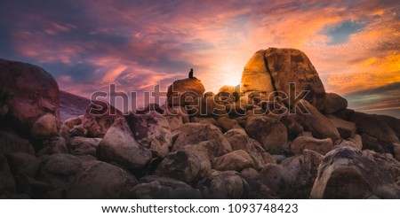 Desert Summer Sunset - Joshua Tree Boulders