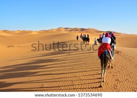 desert, the Western Sahara, Morocco #1373534690