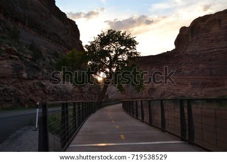 Desert Wilderness #719538529