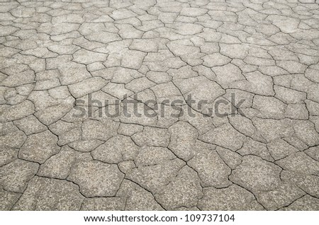 Desert with detail of dead cracked earth