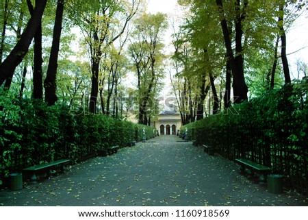 Deserted alley approaching winter and mansion. Autumn in the Park and on the streets, defoliation, yellow leaves. Walking along the city streets and alleys of the Park