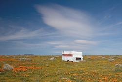 Deserted camper trailer in California Golden Orange Poppy field during superbloom spring in southern California high desert