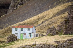 Deserted old house, reindeer grazing in front, Iceland