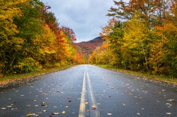 Deserted Straight Mountain Road on a Rainy Autumn Day. Some Fallen Leaves are on the Wet Asphalt. Beautiful Fall Colors. Adirondacks, Upstate New York