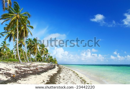 Deserted white sand tropical  beach