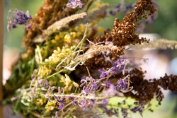 design bouquet of dried flowers in interior, clouseup