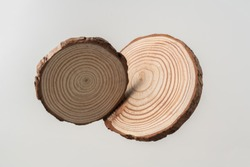Design concept - top view of circular wood piece with annual ring isolated float in air on white background for mockup, it's real photo, not 3D render