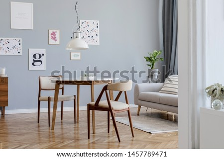 Design scandinavian home interior of open space with stylish chairs, family table wooden commode, gray sofa, accessories and mock up posters gallery wall. Gray background walls. Retro cozy home decor.