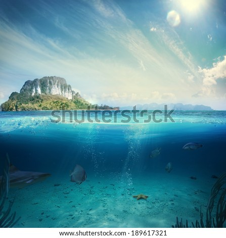Stock Photo Design template with underwater part