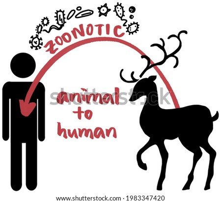 Designed for those who want to illustrate 'zoonotic', especially for those who are doing projects on the recent coronavirus pandemic Stock photo ©