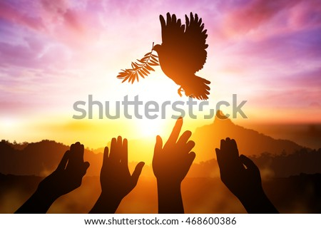 desire for peace concept with Silhouette of many hand desire to Dove carrying olive leaf branch .Freedom concept and World Peace Day hand helping and international day of peace 2016