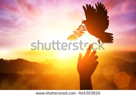 desire for peace concept with Silhouette of one hand desire to Dove carrying olive leaf branch .Freedom concept and World Peace Day hand helping