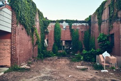 Destroyed abandoned brick buildings with vines and plant overgrowth during daylight hours in Blytheville, Arkansas.