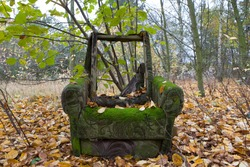 Destroyed armchair in the autumn forest. Garbage in the forest - ecology. Old, damaged armchair in the autumn surroundings of trees.