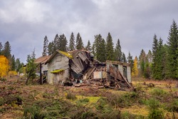 Destroyed private house. Abandoned building. Remains of a collapsed building. Autumn landscape with a collapsed wooden house. Plot with an old house.