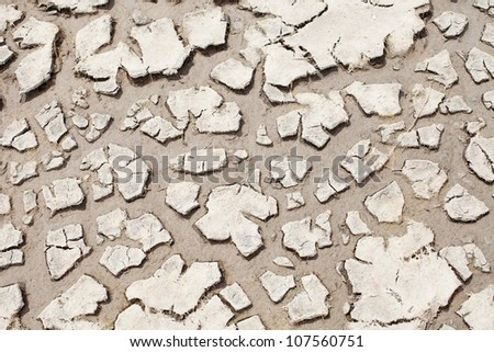 Detail close up of cracked soil showing dry conditions
