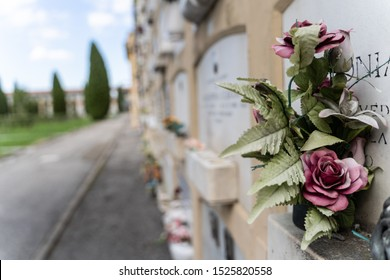Stock photo of a Detail of a flower in the tomb with the cemetery out of focus in the background. Bologna, Italy. Travel concept