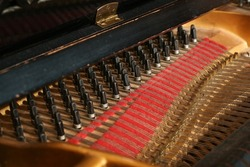 Detail inside a grand piano, pins or pegs with strings and some dust in the old acoustic musical instrument, concept for music and culture, selected focus, narrow depth of field