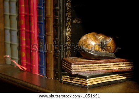 Detail of a bookcase, half-light