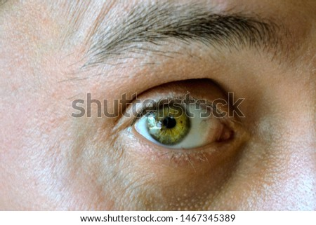 Detail of a brown eye of a handsome man looking at camera. Details of a male face, closeup. He looks a little bit scared and surprised