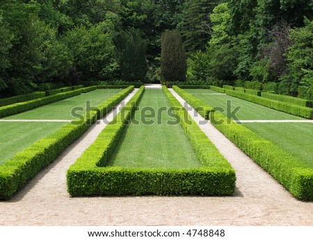 Detail of a garden with a geometric design