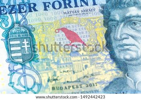 detail of a 1000 hungarian forint  banknote indicating growing economics #1492442423