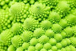 Detail of a Roman broccoli