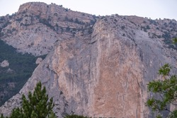 Detail of a steep rocky wall with green fir trees in the mountains. Steep stones of big rocky mountain with coniferous trees. Green landscape with rocks and trees on high mountainside.
