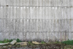detail of an old wall with grass, ideal for ecological concept, photo taken in an old factory