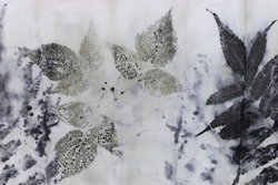 detail of black imprint of natural leaves on a cotton fabric