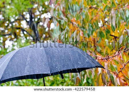 detail of black umbrella in the rain #422579458