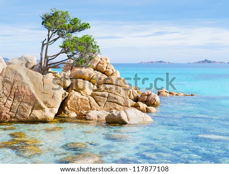 detail of Capriccioli beach in Costa Smeralda, Sardinia #117877108