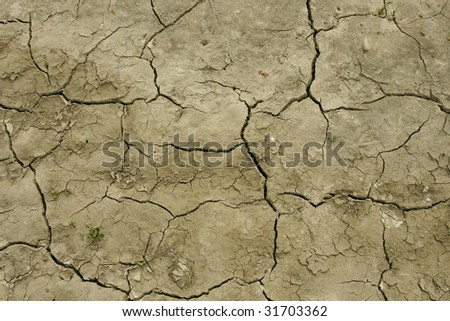 Detail of field  baked earth after a long drought.