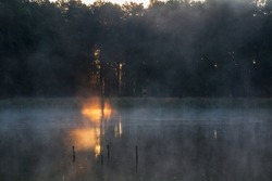 Detail of first sunbeam shine through forest to pond with misty haze, fog. Morning sunrise, late summer Czech landscape