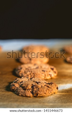 Detail of freshly baked homemade chocolate cookies on baking sheet on baking paper #1451446673