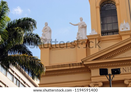 Detail of Metropolitan Cathedral (Our Lady of Conception) in Campinas, Brazil #1194591400
