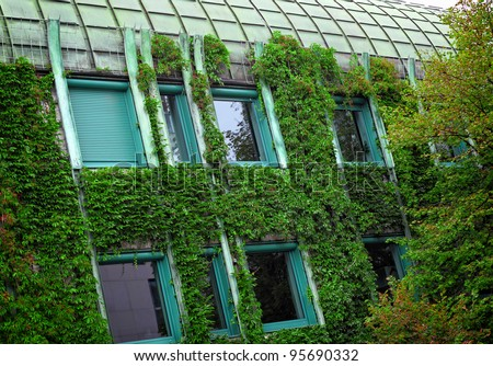 detail of modern house with plant on wall - stock photo