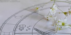 Detail of printed astrology chart with Mercury planet and Sun with white small flower heads in the background