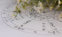 Detail of printed astrology chart with planets Jupiter and Neptun and small white foeld flowers in the background