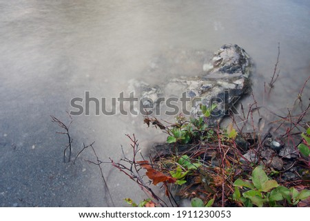 Detail of rock and small bushes at water's edge of Sooke river in autumn flood, Vancouver Island, British Columbia Stock fotó ©